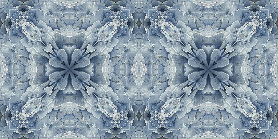 I soggetti di Vincent de Hoe celebrano le regioni polari e le distese infinite di ghiaccio