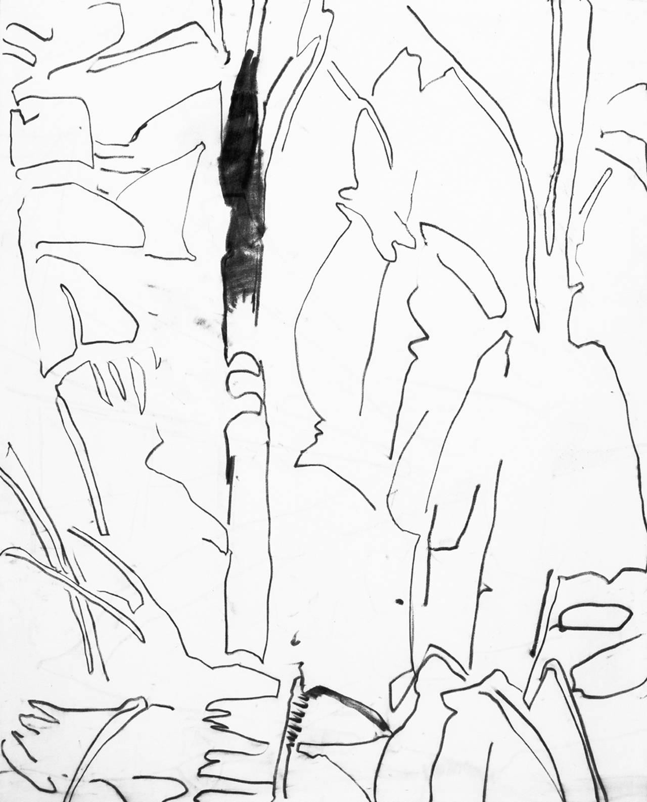 Ensete galucum 198x162 pastello grasso su tela bianca
