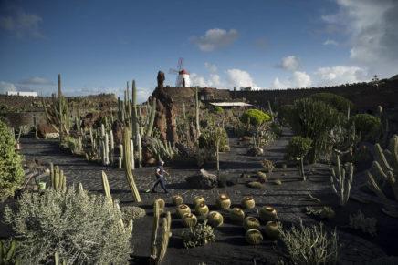 Al Jardín de Cactus di Lanzarote il Premio Carlo Scarpa