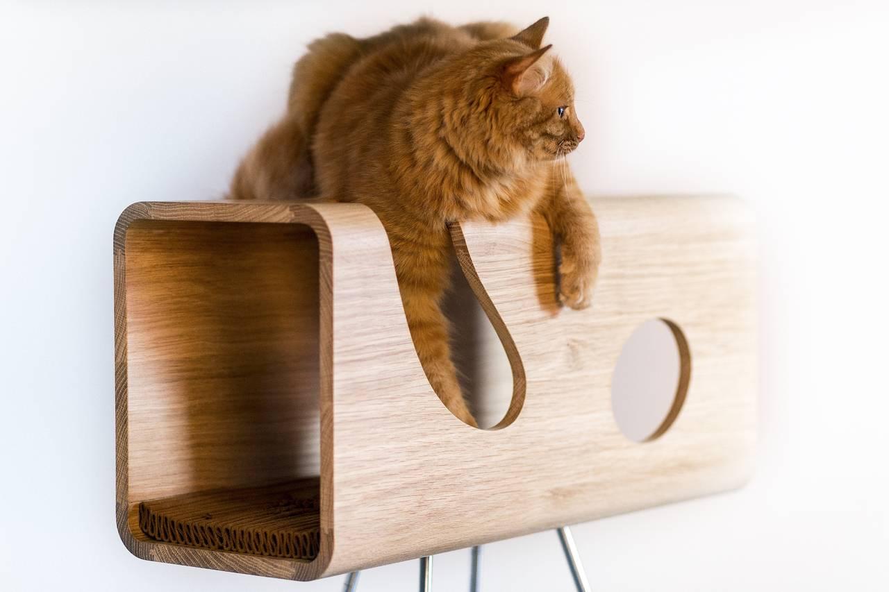 Pet friendly design progettare conciliando estetica e for Tiragraffi per gatti ikea
