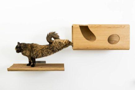 Pet – friendly design: estetica e benessere degli animali domestici