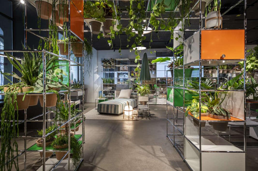 usm haller world of plants